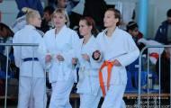 Чемпионат области по дзюдо 2014
