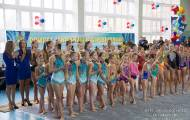 Открытое первенство области по художественной гимнастике 2015