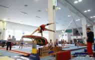 Кубок губернатора по спортивной гимнастике 2015