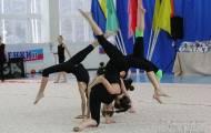 Открытый чемпионат и первенство области по художественной гимнастике 2016