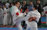 Чемпионат области по карате 2013