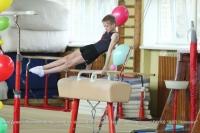 Первенство области по спортивной гимнастике прошло в Калуге