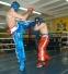 Будущие чемпионы боксировали в Тарусе
