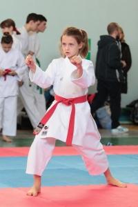 Фестиваль боевых искусств прошёл в Анапе
