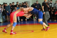 Две «бронзы» борцов на чемпионате ЦФО