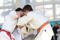 Чемпионат и первенство области по дзюдо прошли в Бабынине