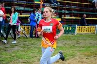 Самые спортивные – ветеринары Дзержинского района