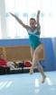 Три «бронзы» гимнастов во Владимире