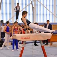 Семь медалей обнинских гимнастов на Спартакиаде молодёжи России!