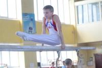 Первенство области оспаривали 75 гимнастов