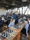 Поклонники Каиссы собрались в Обнинске