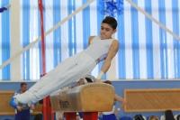 «Серебро» обнинского гимнаста во Владимире